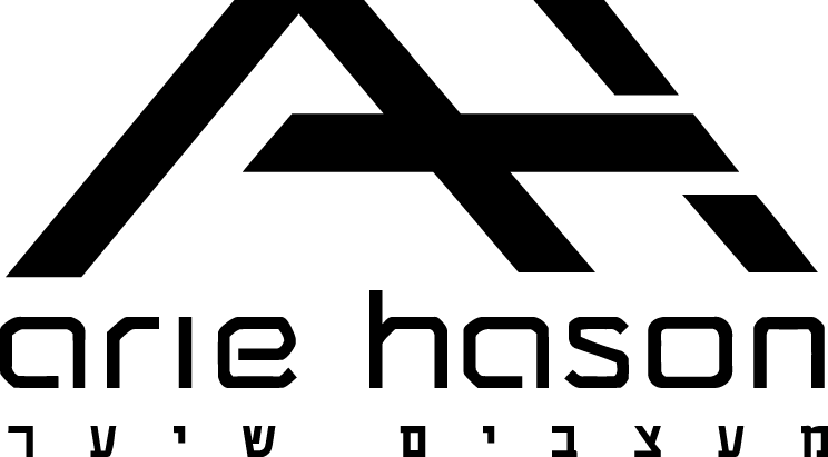 logo arie hason